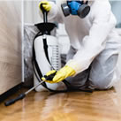 other pest control services for commercial use