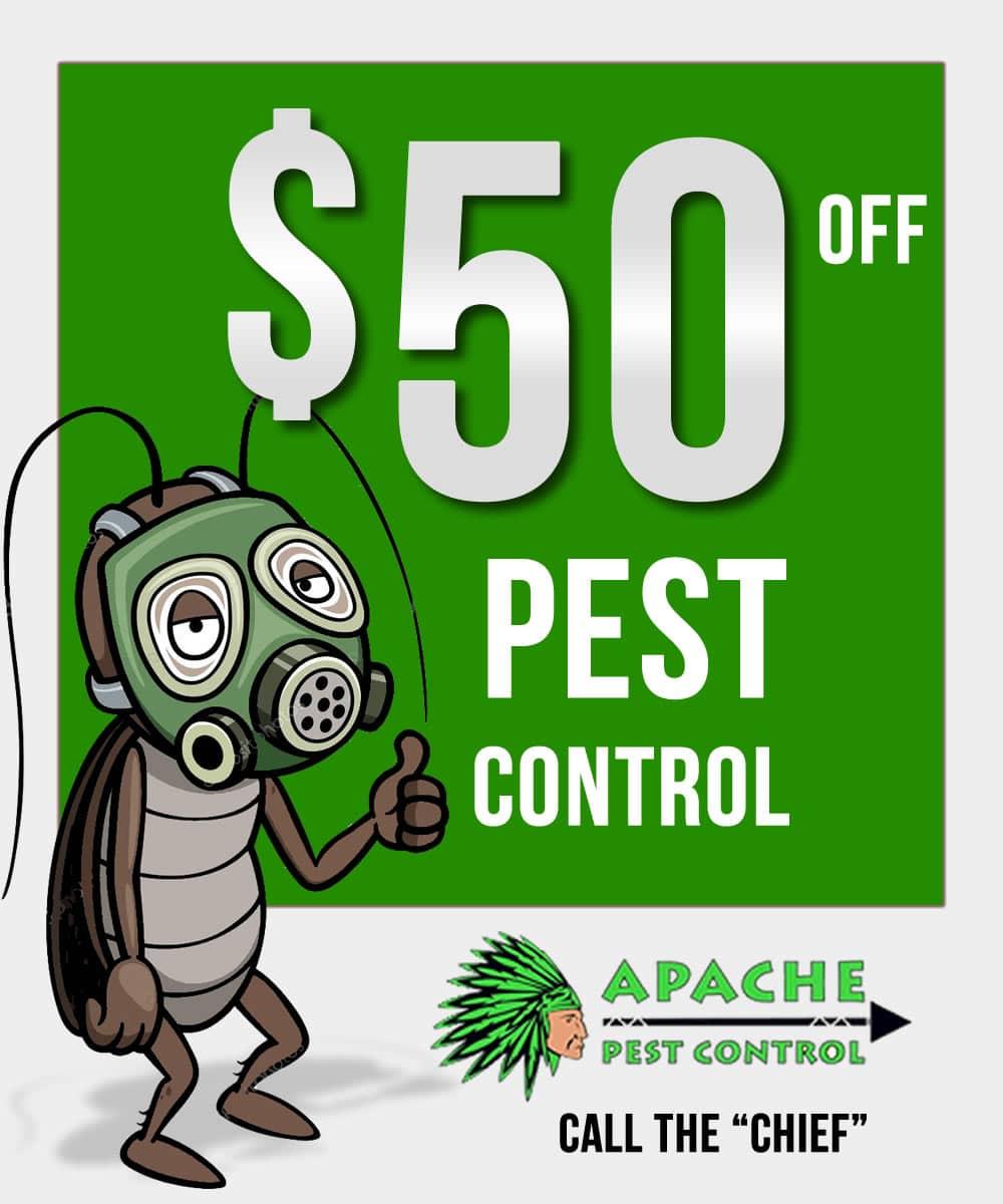 50 off pest control