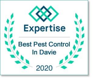 expertise best pest control davie