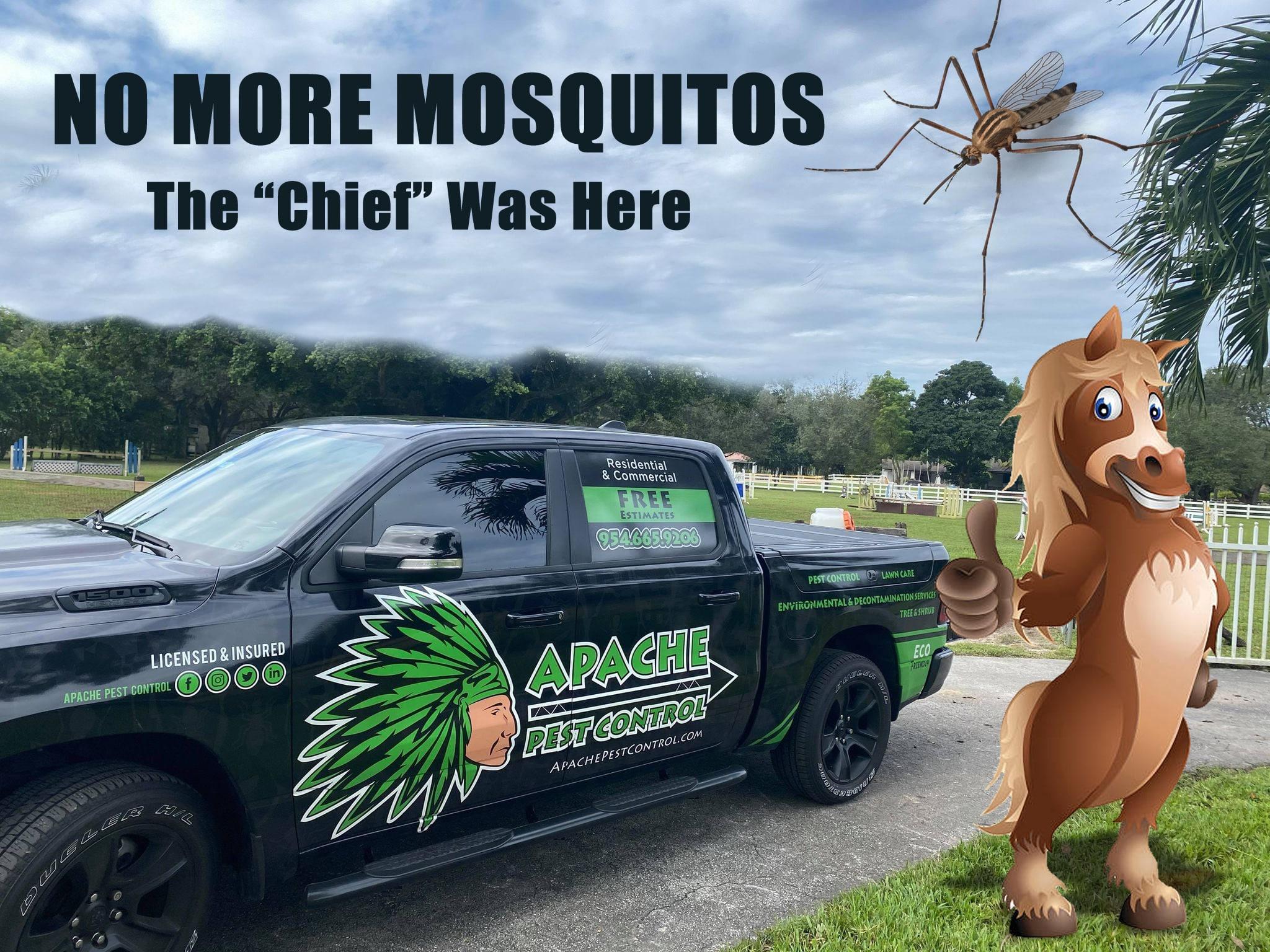 horse mosquitos
